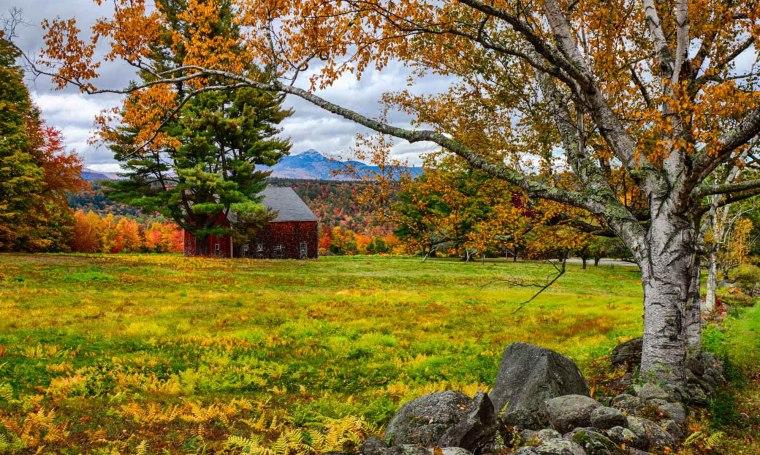 NH-Cleveland-fall-foliage.jpg